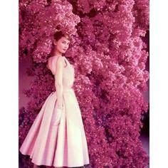 To Plant a Garden is to believe in tomorrow - Audrey Hepburn