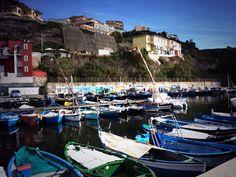 Porto di Acquamorta