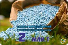 По оперативным данным, на 22 мая накопленные с начала года российскими аграриями ресурсы минеральных удобрений (с учетом остатков 2016 г.) составляют 2,025 млн тонн действующего вещества, что на 170,5 тыс. ...