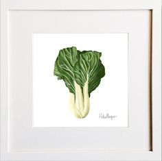 Bok Choy Print Irish Design, Framed Prints, Art Prints, Pigment Ink, Colour Schemes, Watercolor Paper, Wooden Frames, All The Colors, Greeting Cards