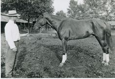This is a circa 1910 picture of Earl (Jim) Strock at the Wayne County fairgrounds in Wooster, Ohio with his sorrel gelding pacer, Bobby Pierce. The horse raced at the 1910 Wa. Co. Fair in a 2:21 Pace going for a purse of $ 300 where he finished 2nd in the four horse field. Bobby Pierce raced again at the 1911 Wa. Co. Fair in a 2:20 Pace and won 3 out of the four heats raced that day. Times for the four heats were 2:20 1/4, 2:21 1/4, 2:22, 2:22. Four Horses, Race Horses, Horse Racing, Standardbred Horse, Thoroughbred, Wooster Ohio, Wayne County, Harness Racing