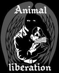 alf - animal liberation