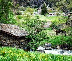 Me voy a soñar con verdes praderas y la música del viento y el agua... Puede haber algo más idílico? #buenasnoches #andorraworld by lacosmopolilla