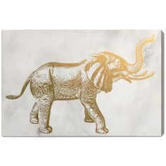 Oliver Gal Gallery Elephant 24x16 Canvas Wall Art ($30) ❤ liked on Polyvore featuring home, home decor, wall art, no color, elephant home decor, elephant wall art, elephant canvas wall art, elephant home accessories and canvas wall art