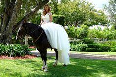 loving the dark horse's colour contrasting to the crisp white of the bride's dress // vintage wedding at Oatlands House www.luxuryweddings.com.au  www.luxuryweddings.com.au