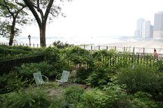 Verdant Gardens Design - Brooklyn Heights Backyard