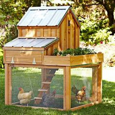 die 198 besten bilder von garten vivarium chicken coop designs und garten ideen. Black Bedroom Furniture Sets. Home Design Ideas