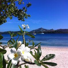 Blue Lagoon, Fiji. Photo courtesy of norwegianglobetrotter on Instagram.