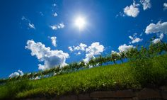 Weinstrasse Eppan - Vino del Strada Missian, Itally, Südtirol - Alto Adige Light And Shadow, Clouds, Explore, Outdoor, Wine, Outdoors, Outdoor Games, The Great Outdoors, Cloud