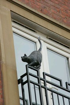"""One of the """"Cats of York"""" ~~ would love to see them. Crazy Cat Lady, Crazy Cats, Animal Sculptures, Sculpture Art, Cat Statue, Photo Chat, Garden Statues, I Love Cats, Oeuvre D'art"""