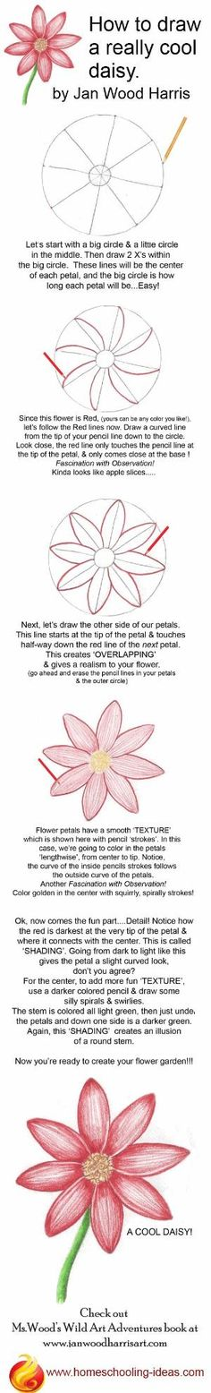 How to draw a cute daisy! Step by step, easy instructions. You could draw it as a hair accessorie even by olga