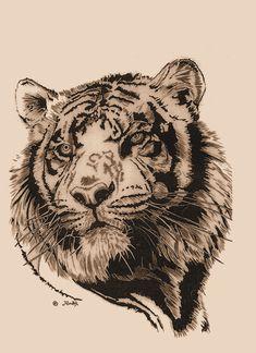 tiger_2_by_agaricgreywolf