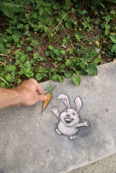 David Zinn encourages generosity to the dimensionally challenged. Chalk street art. https://www.facebook.com/pages/Creative-Mind/319604758097900