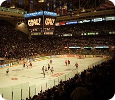 Get a sports management job at Maple Leaf Gardens: Toronto, Ontario Ice Hockey Teams, Hockey Games, Sports Teams, Maple Leaf Homes, Maple Leafs Hockey, Air Canada Centre, Beautiful Home Gardens, Indoor Arena, Field Of Dreams