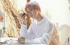 jin blood sweat and tears Jung Hoseok, K Pop, Seokjin, Suho, Spirit Fanfic, Hip Hop, Bts Mv, Bts Wings, Blood Sweat And Tears