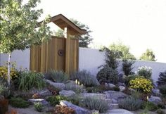 colorful drought tolerant landscaping