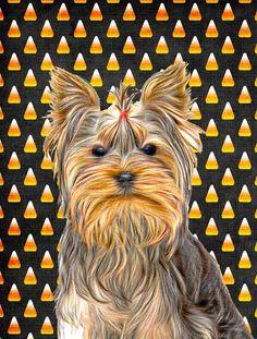 Candy Corn Halloween Yorkie / Yorkshire Terrier Flag Garden Size KJ1212GF