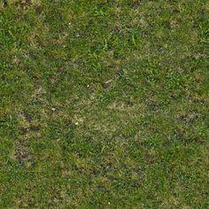 Картинки по запросу grass texture tile