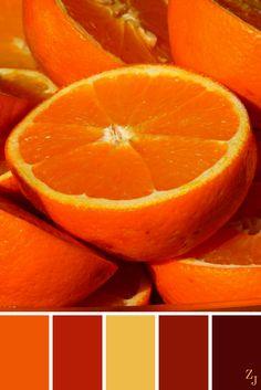 ZJ Colour Palette 114 #colourpalette #colourinspiration
