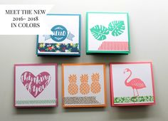 InColors Pop of Paradise New colors from 2016-201 Stampin Up