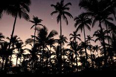 Comandatuba @bernardomarotta  #sunrise #fotografia #bahia #sun