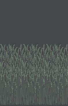 Feather Grass Black wallpaper by Farrow & Ball