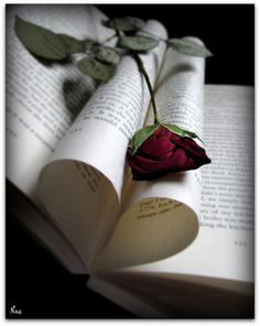 [ I ] ᙖᎧᎧҠᎦ [ I ] ~ Book. Heart. Rose.