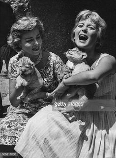 Actresses Lorella De Luca and Alessandra Panaro playing with two week old lion cubs in Rome
