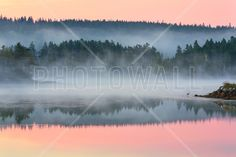 Whites Island at Dawn - Fototapeter & Tapeter - Photowall