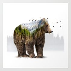 Wild I Shall Stay | Bear (Double Exposure) Art Print & More by soaring anchor designs