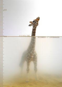 2009意大利Good 50X70国际海报设计赛:气候变化主题获奖作品 - Arting365 | 中国创意产业第一门户]
