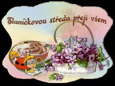 Snow Globes, Good Morning, Night, Windows, Buen Dia, Bonjour, Bom Dia, Buongiorno, Window