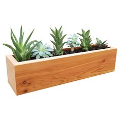 "Gronomics Succulent Planters are perfect for the individual who wants to start an easy-care garden. Succulents thrive in sunny, well drained areas with very little maintenance. The Gronomics planter is made of 100% Western Red Cedar and offers three 3"" holes to accommodate a variety of plants. They are the perfect fit for a window sill, desktop, or any well-lit area."