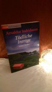 Arnaldur Indridason - Tödliche Intrige