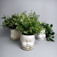 Porcelain baby doll head planter - There's something a little creepy but totally cool about these dollface head planters. I love the choice in plants, too. Head Planters, Planter Pots, Container Plants, Container Gardening, Plant Containers, Eclectic Vases, Garden Art, Home And Garden, Creepy Dolls