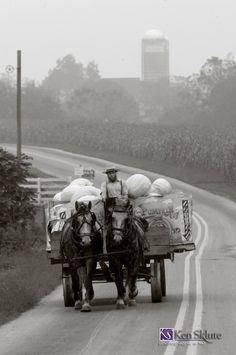 Amish man and daughter with wagon load of pumpkins.