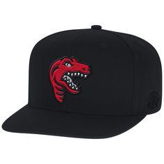 Elements Snapback Toronto Raptors