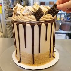 Caramel S'mores Cake - Cupcakes Cake Decorating Videos, Cake Decorating Techniques, Crazy Cakes, Fancy Cakes, Baking Recipes, Cake Recipes, Dessert Recipes, Tea Cakes, Food Cakes