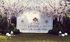 Cheery blossom wedding