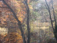 Hanover, MA. North River. Autumn