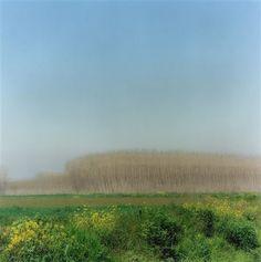 3-02-9c-9, 2002, Andalucia, Spain by Lynn Geesaman