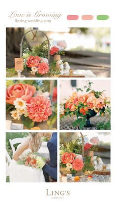 Coral rose, dahlia and peony. 40 colors rose OFF - - Spring wedding trends! Coral rose, dahlia and peony. 40 colors rose OFF Spring wedding trends! Coral rose, dahlia and peony. 40 colors rose OFF Rosa Coral, Spring Wedding Colors, Fall Wedding Flowers, Peach Wedding Theme, Country Wedding Colors, Coral Wedding Colors, Spring Weddings, November Wedding Colors, Dahlia Wedding Bouquets