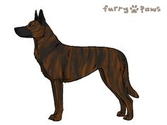 Furry Paws // WCT {HEX} Helix |4E 23HH lala 4spd|Red 1.537x *BoB x2*'s Kennel