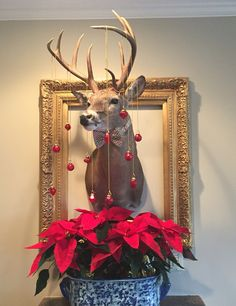 Christmas deer head with gold frame, bow tie, ornaments, poinsettias, and blue and white planter Christmas Deer, Christmas 2019, Christmas Wreaths, Christmas Decorations, Christmas Ornaments, Holiday Decor, Holiday Ideas, Xmas Crafts, Christmas Projects
