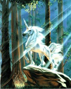 Sue Dawe unicorn Light In The Forest. I had another folder with this picture.