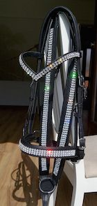 Class Quality Baroque Horse Tack - The Friesian-Shop. English Horse Tack, Tack Shop, Western Tack, Horse Fashion, Friesian, Horse Riding, Dressage, Solid Brass, Swarovski Crystals