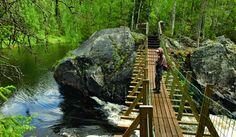 Oulanka nationalpark, ide til vandrerute Finland
