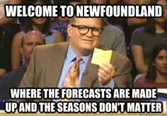 20 reasons living in Newfoundland is awesome, and weird.