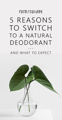 Find out why it's worth switching to a natural deodorant, how they work and what to expect.