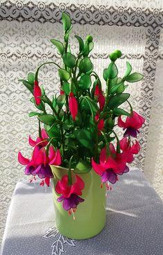 Nylon Flowers, Real Flowers, Beautiful Flowers, Nylon Stockings, Center Pieces, Flower Arrangements, Bloom, Wire Flowers, Silk Flower Arrangements